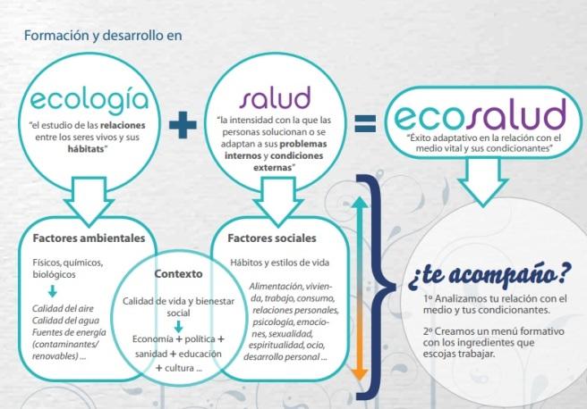 Esquema EcoSalud